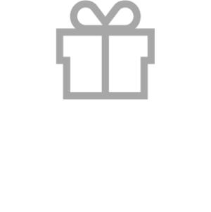 Icon Geschenkpaket